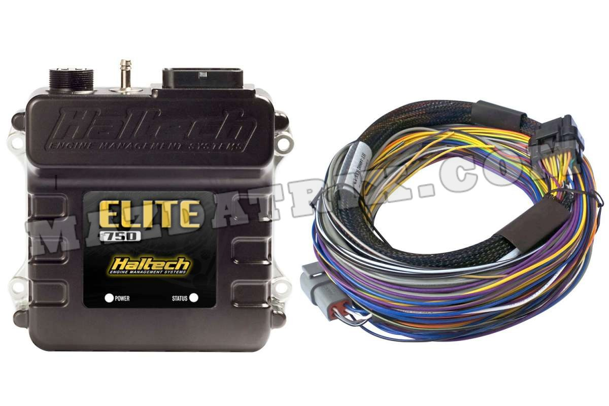 Haltech Elite 750  With Basic Wire