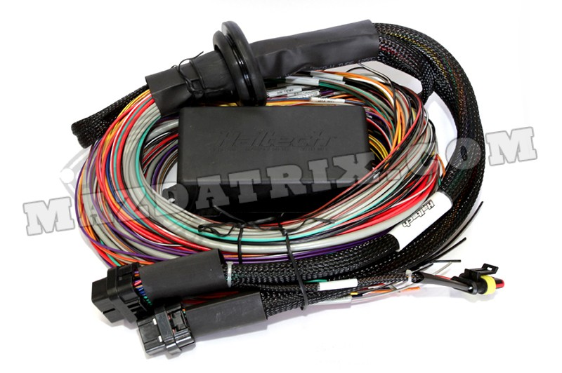 Haltech Elite 2500 With Premium Wire